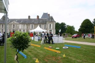 Team Building Pétanque